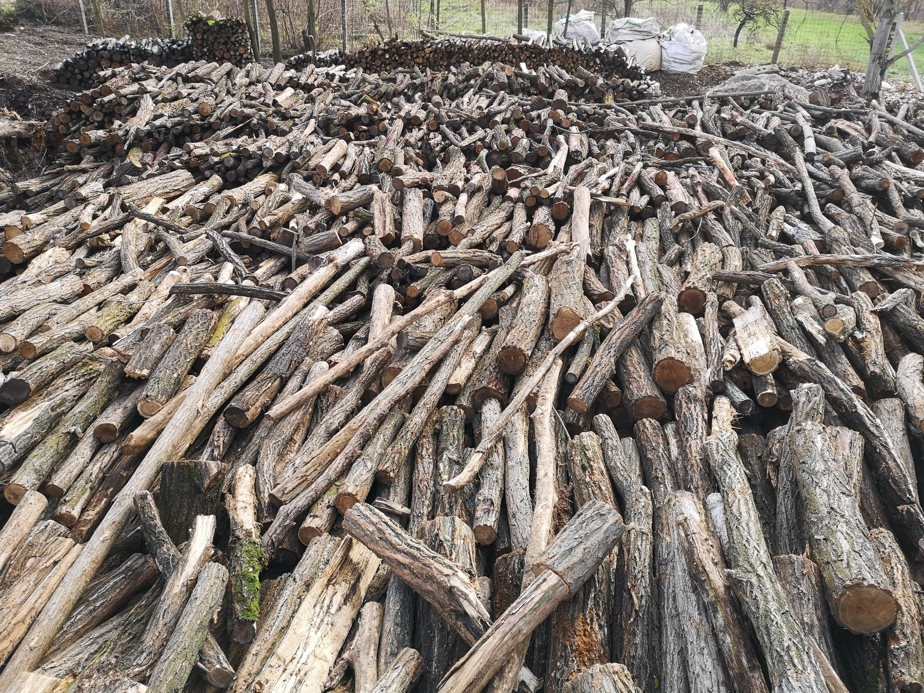 457 m3 tűzifa várja új gazdáját