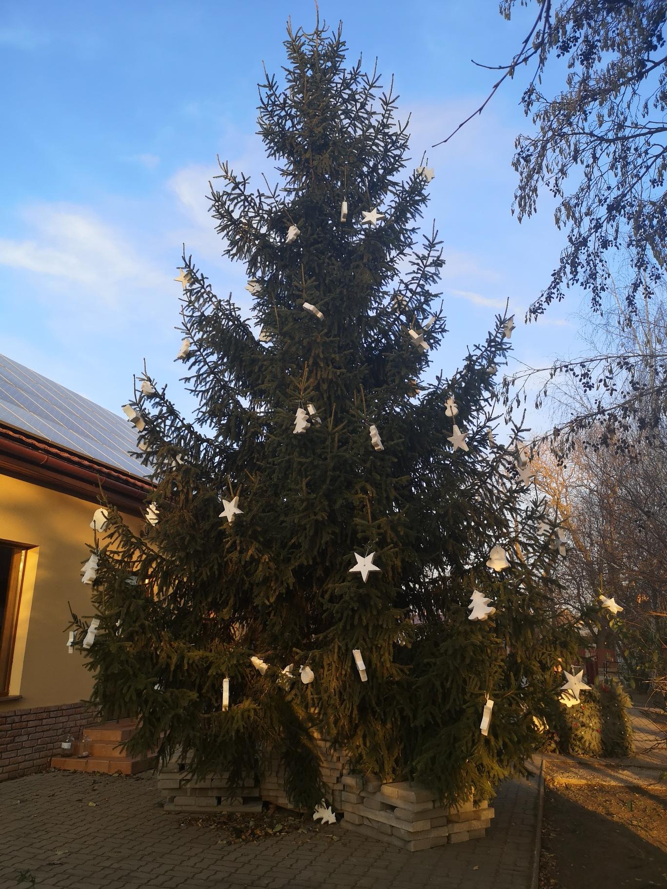 Pénteken felállították Tornyospálca idei karácsonyfáját